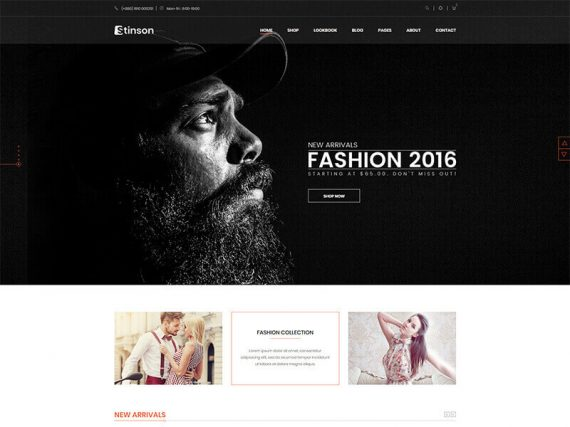 Stinson - Fashion Store HTML Template
